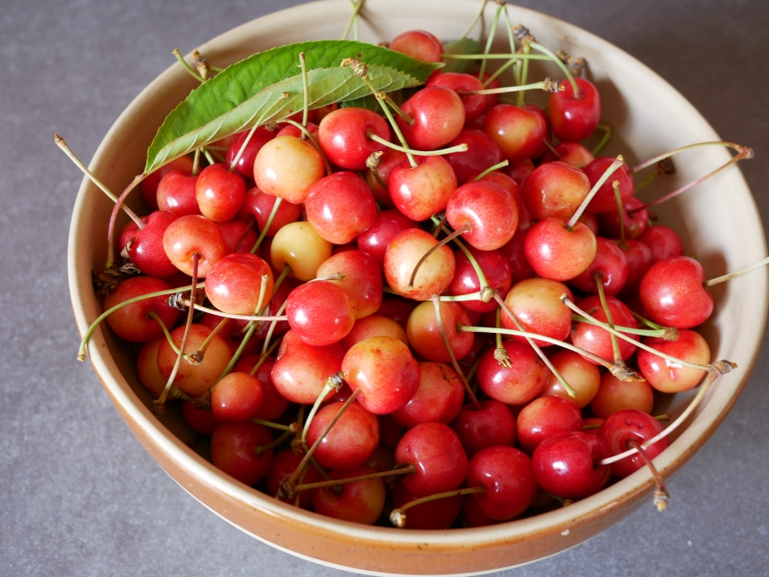 Saladier de cerises