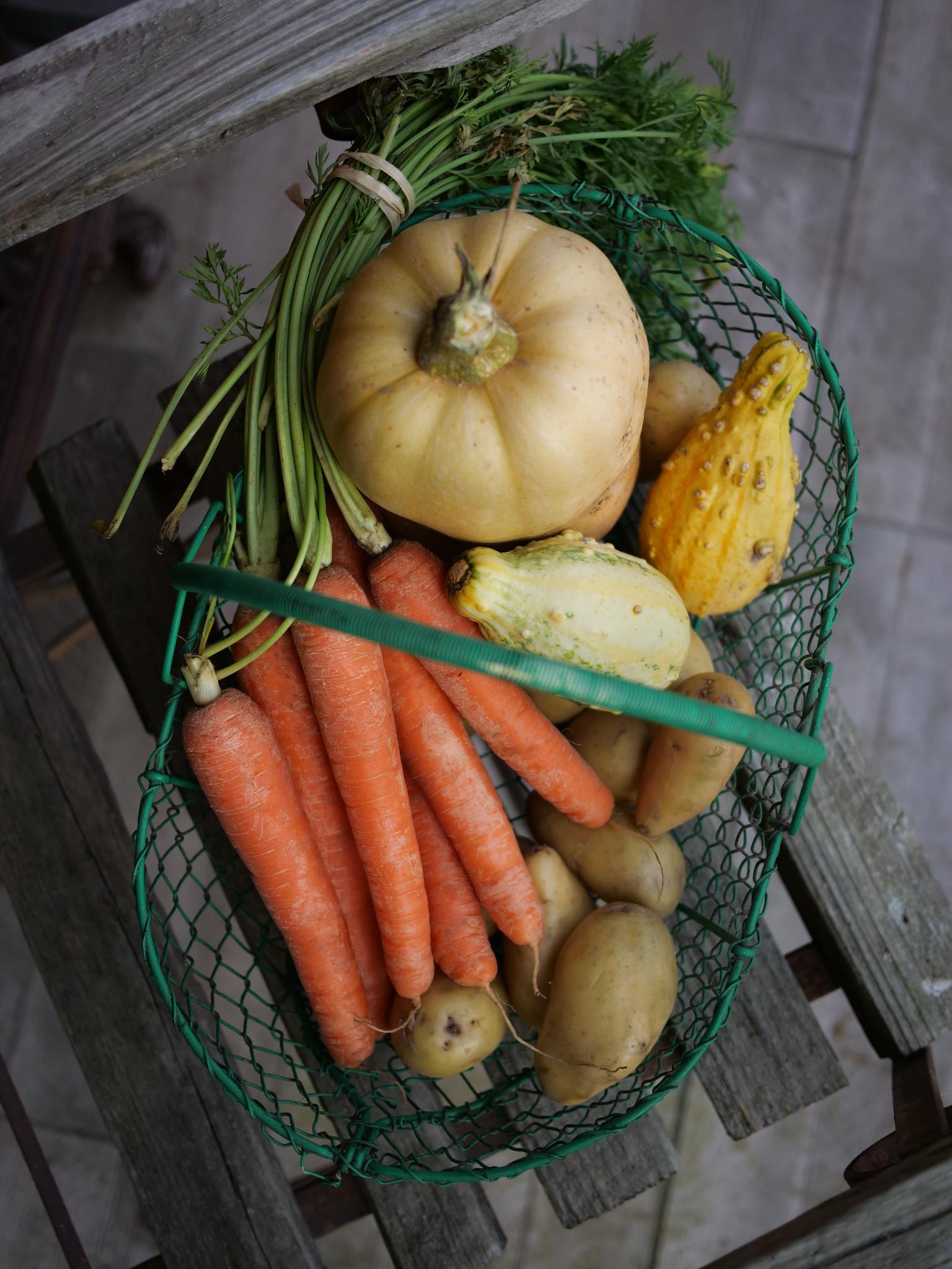 Panier de légumes hiver